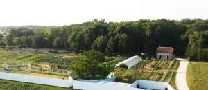 La ferme prise en photo depuis le sommet du château d'eau, 31 juillet 2014