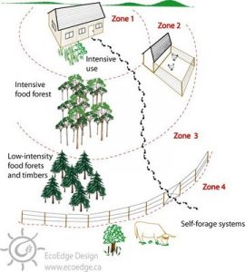 permaculture_zones perspective