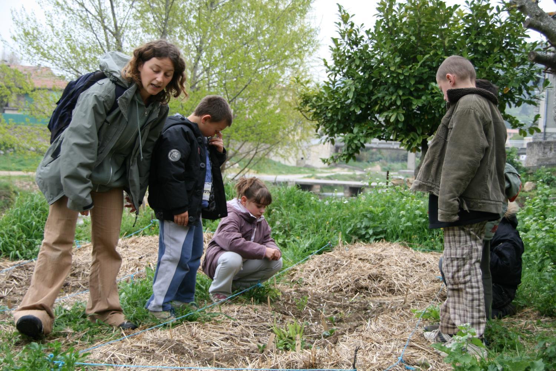 Les jardins d 39 illas fermes d 39 avenir for 6 jardin guillaume bouzignac
