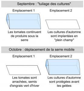 """Les """"tuilages des cultures"""" permet d'augmenter la production"""
